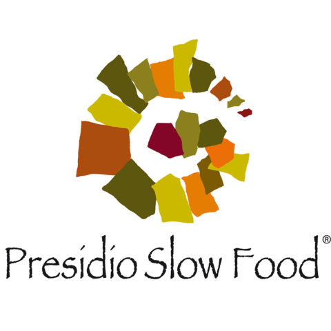 Stracchino all'antica - Presidio Slow Food